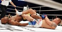 MMA: Anatomia delle sottomissioni
