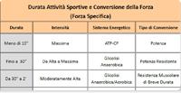 La Finalità della Periodizzazione della Forza nello Sport: la Conversione in Forza Specifica
