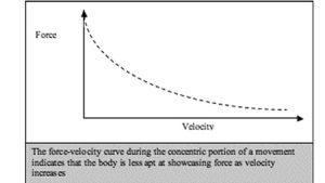Grafico con curva inversa forza-velocità