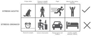 Infografica di confronto tra stress acuto e cronico