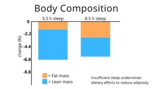 Grafico che mostra gli effetti del sonno sulla composizione corporea